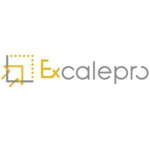 Logo-Variante Excalepro GmbH